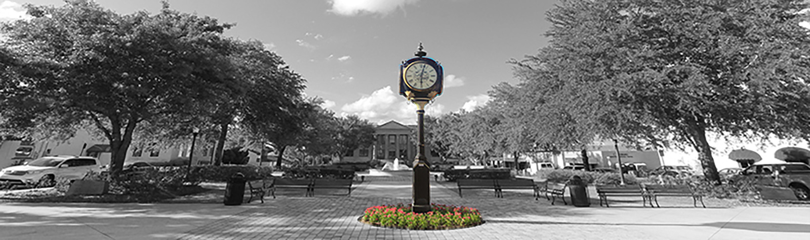 clock in front of Leesburg City Hall